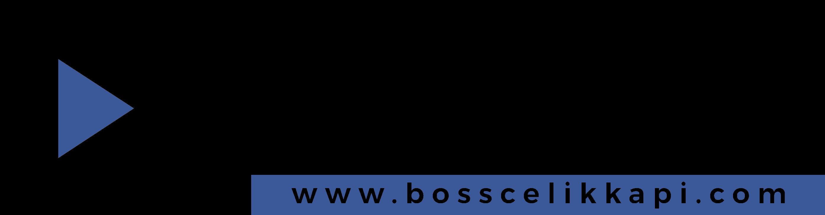 Boss Çelik Kapı Villa Kapısı Modelleri